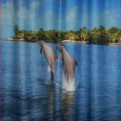 ШТОРА ДЛЯ ВАННОЙ НА ЛЮВЕРСАХ dolphines